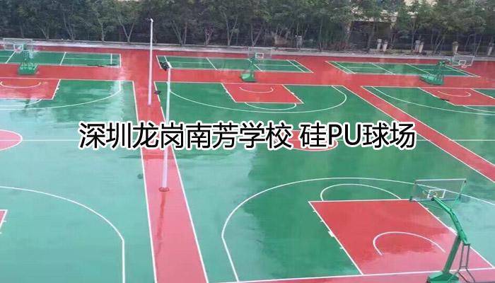 深圳龙岗南芳学校