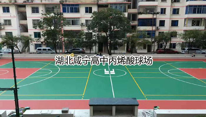 湖北咸宁高中丙烯酸雷竞技网站